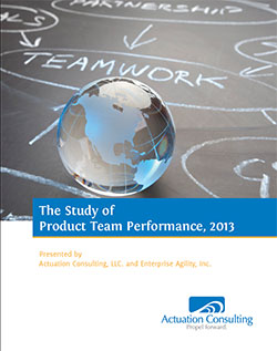 white paper: 2013 Study of Product Team Performance